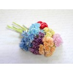 Sample Pack - Mini Mixed Chrysanthemum Flowers