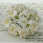 Sm. Gardenias - 50