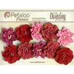 Dahlias - Red Raspberry