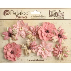 Darjeeling - Medium - Wild Blossoms - Pink