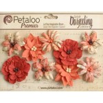 Darjeeling - Medium - Wild Blossoms - Paprika