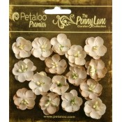 Penny Lane - Forget Me Nots - Antique Beige