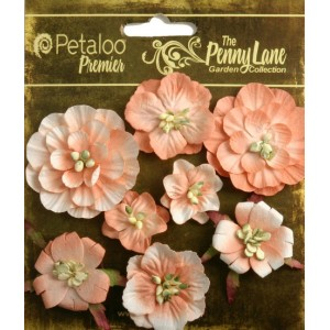Penny Lane - Mixed Blossoms - Antique Peach