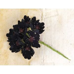 Engraver Flower Stem - Black