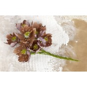 Lifetime Flower Stem - Brown