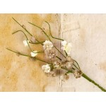Engraver Solid Flower Vine - Natural